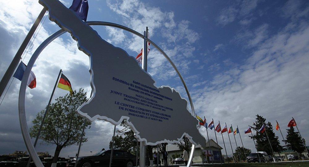 НАТО заинтересована вразвитии вооруженных сил Грузии— Генерал Павел