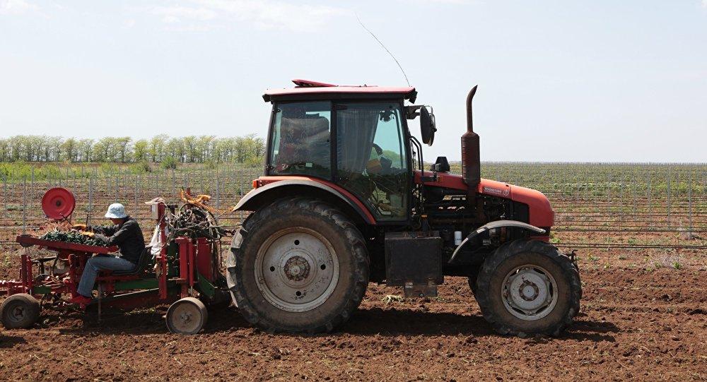 Трактор  быдыры