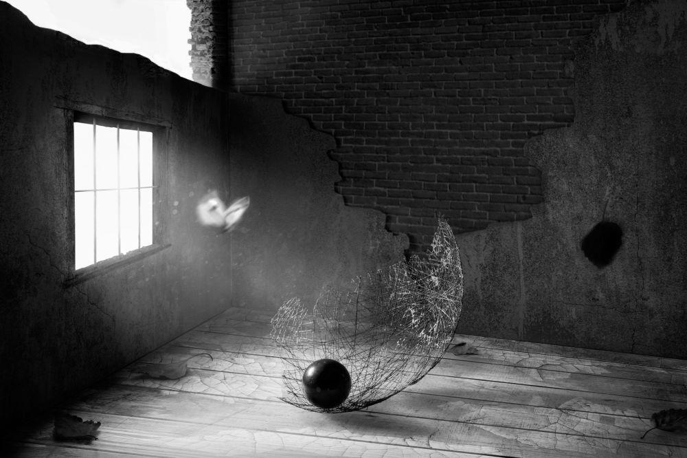 Снимок Из другого мира российского фотографа Виктора Донцова из категории Still Life (Open), вошедший в шортлист фотоконкурса 2018 Sony World Photography Awards