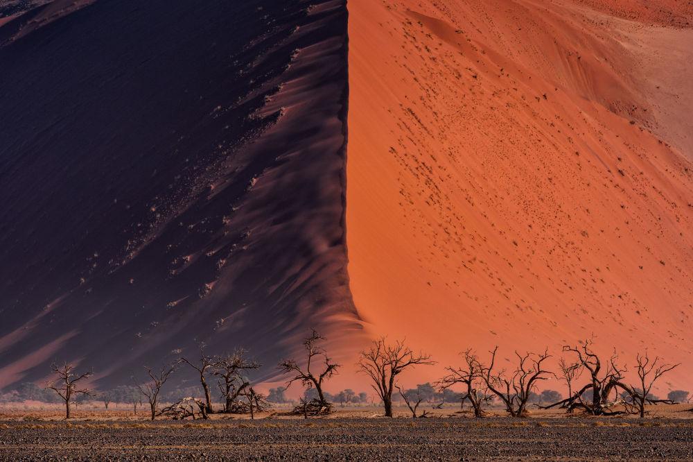 Снимок The Great wall of Namib тайского фотографа Paranyu Pithayarungsarit из категории Landscape & Nature (Open), вошедший в шортлист фотоконкурса 2018 Sony World Photography Awards