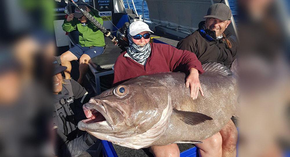 Британка поймала рыбу размером с диван