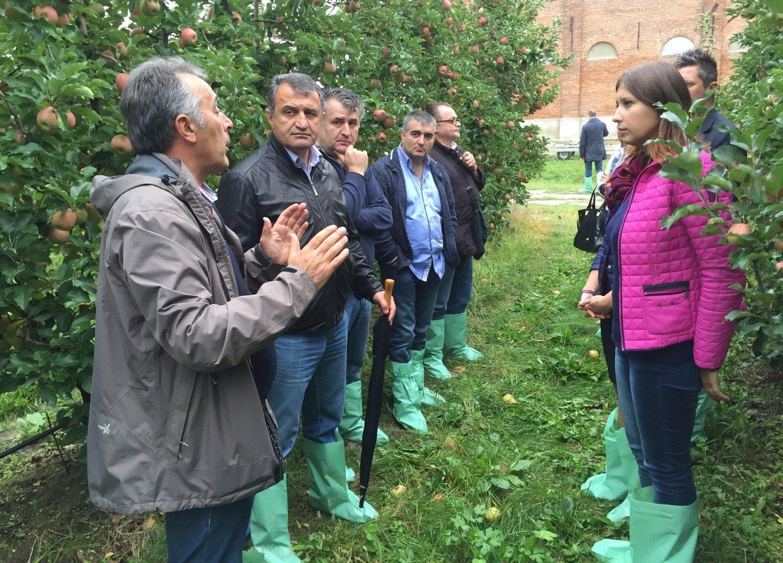 Анатолий Бибилов посетил итальянский сельхозхолдинг Маццони групп
