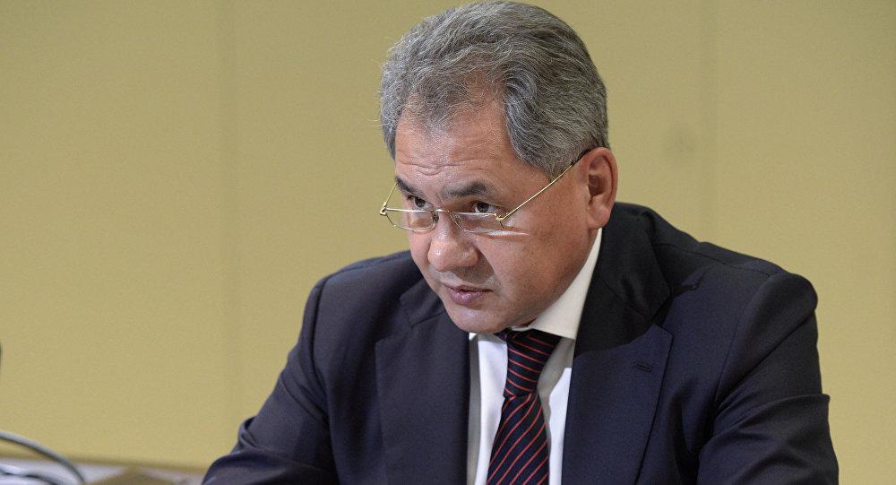 Министр оброны РФ С.Шойгу