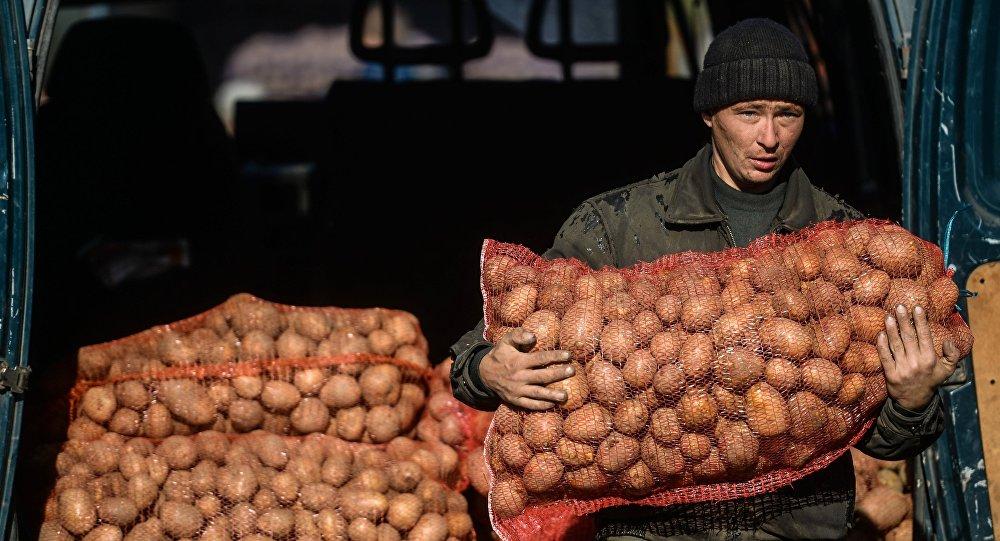 Оптово-розничный рынок Привоз в Симферополе